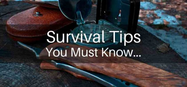 10 Wilderness Survival Tips You Must Know