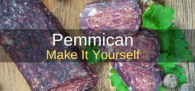 Pemmican The Original Survival Food: Make It Yourself